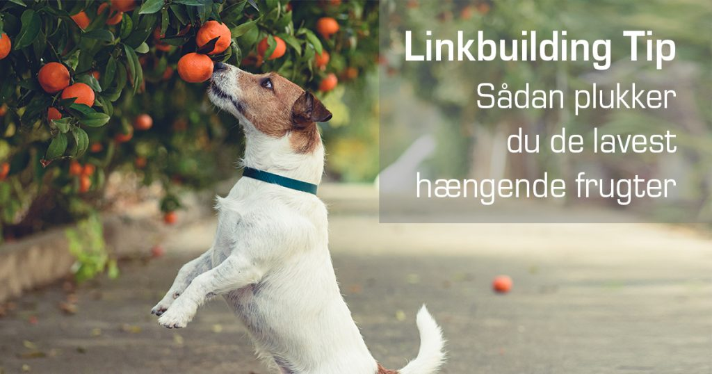linkbuilding-tips-1-social